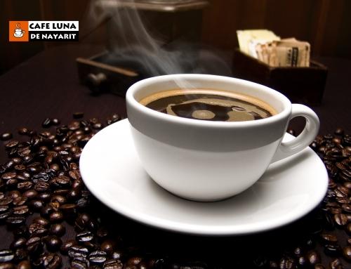 Entendiendo la Cafeína